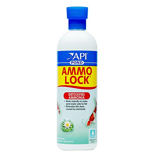API POND AMMO-LOCK Pond Water Ammonia Detoxifier 16-Ounce Bottle