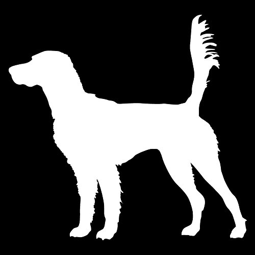 English Setter On Scent (White - Image Facing as Shown - Small) Decal Sticker - Hunting Dog -