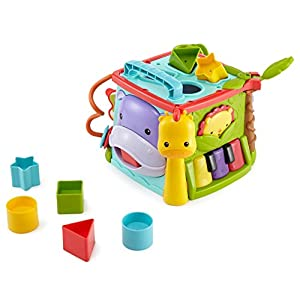 Fisher Price Play and Learn...