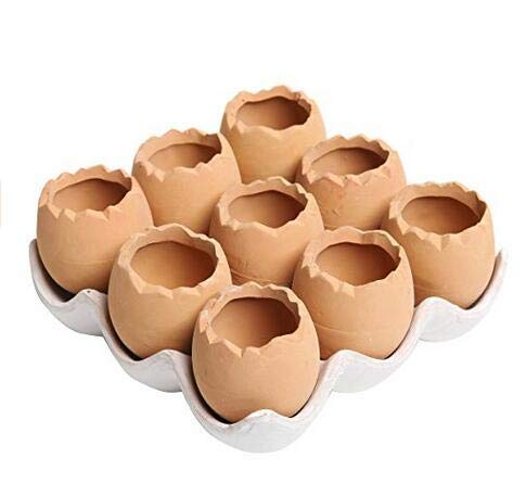 - LoLa Ling Adorable Set of 9 Brown Eggs Design Ceramic Succulent Planters/Mini Decorative Pots/Tray
