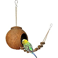Niteangel Natural Coconut Hideaway with Ladder, Bird and Small Animal Toy (House with Ladder, Natural Surface)