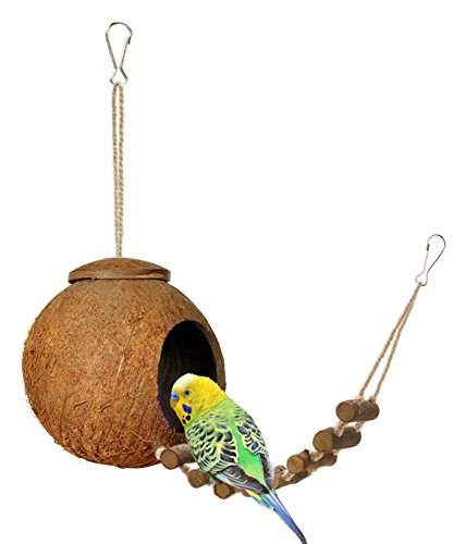 Coconut Bird - Niteangel Natural Coconut Hideaway with Ladder, Bird and Small Animal Toy (House with Ladder, Natural Surface)