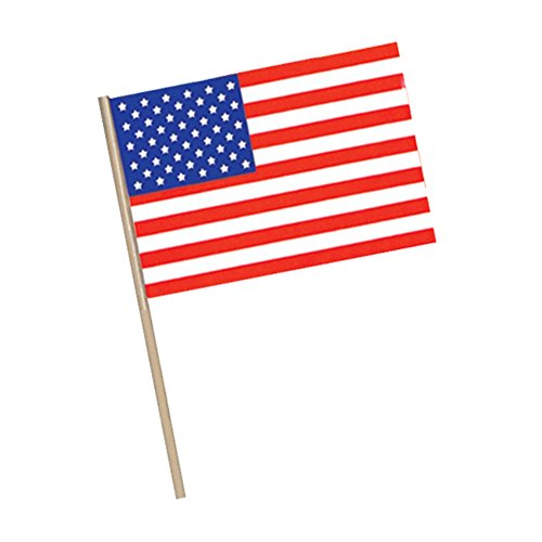 Beistle 50975 144-Pack American Plastic Flag, 11-Inch by 17-Inch -