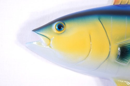 """Hand Painted 12\"""" Yellow Fin Tuna Salt Water Game Fish Wall Mount Decor Plaque"""