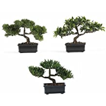 Nearly Natural 4121 Bonsai Decorative Silk Plant Collection, 12-Inch, Green