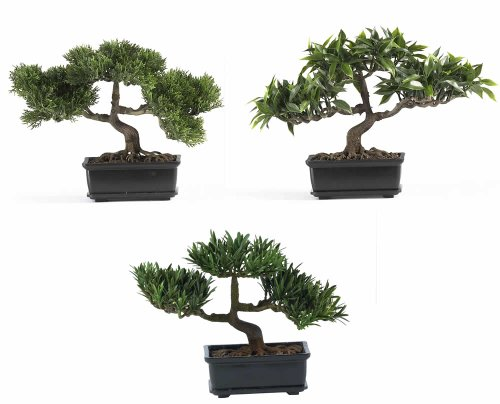 Nearly Natural 4121 Bonsai Decorative Silk Plant Collection, Plastic, 12-Inch, Green by Nearly Natural