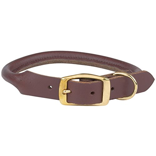 "Casual Canine Rolled Leather Dog Collar, Fits Necks 16"" to 18"", Brown"