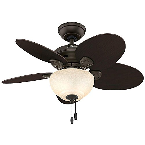 Hunter Carmen 34 in. New Bronze Indoor Ceiling Fan #250
