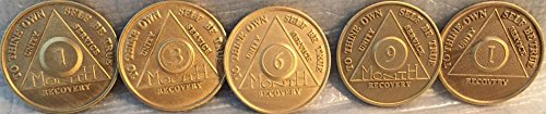 (1st Year Set of 5 AA Medallions - Month 1 3 6 9 and 1 Year All Bronze Alcoholics Anonymous Sobriety Chips )