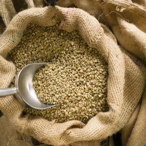 Green Coffee Beans Whole Unroasted, Brazil Natural 2/3 Armizade 17-18, Bulk 10lbs