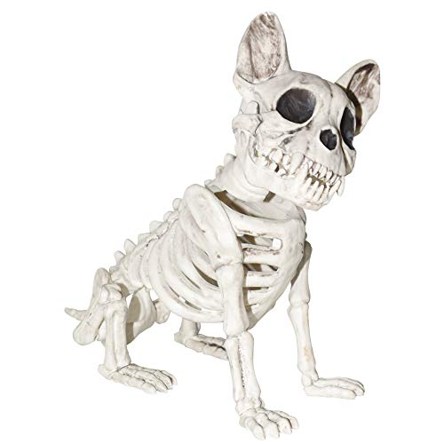 Sunstar Industries Dog Skeleton Halloween Prop Decoration]()