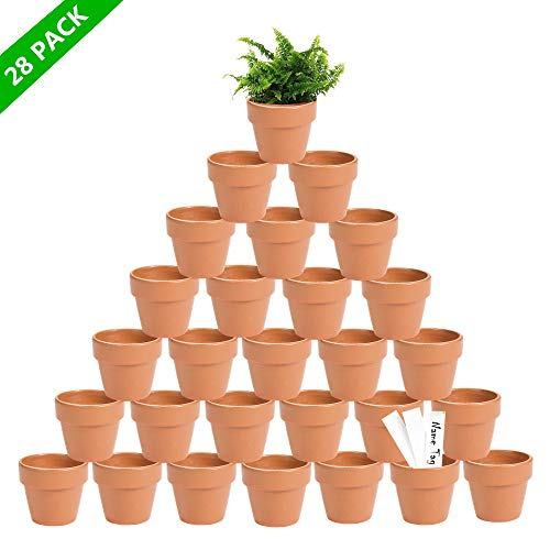 DDMY 28 Pcs Mini Clay Pots 2.3'' Small Terracotta Pot Flower Vases Pottery Planters Clay Ceramic Pots Succulent Nursery Pots- Great for Indoor/Outdoor Plants,Crafts,Wedding Favor Kid Birthday