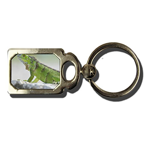 Green Iguana One Side Framed Metal Key Chain from Style in Print