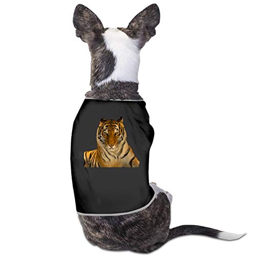 ACFUNEJRQ Bengal Tiger Vest Sweatshirt Pet Sleeveless T-Shirt Fit for Small Cats and Dogs