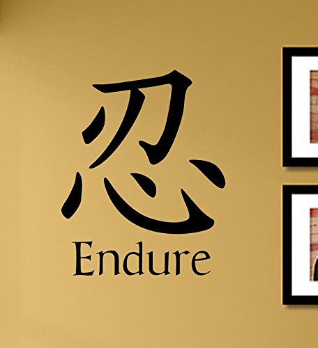 Amazon.com: Japanese kanji Endure Vinyl Wall Art Decal Sticker: Home ...
