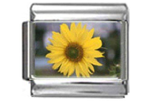 Stylysh Charms Sunflower Flower Photo Italian 9mm Link GA010 - Flower 9mm Italian Charm