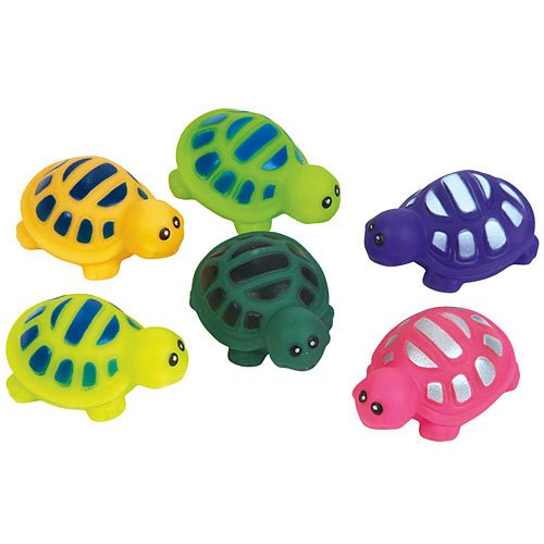 Squirt Turtle