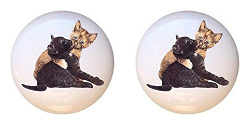 SET OF 2 KNOBS - Feline Cat Friends - Cats - DECORATIVE Glossy CERAMIC Cupboard Cabinet PULLS Dresser Drawer KNOBS (Friends Switchplate)