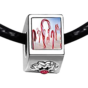 Chicforest Silver Plated Candy Cane Land Photo Red Zircon Crystal July Birthstone Flower Charm Beads Fits Pandora Charm Bracelet