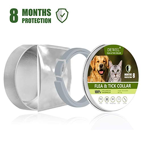 - FENGHUA GLASS HOME Flea and Tick Prevention for Dogs -Primium Pests Control Collar - Adjustable and Water Resistance Flea Collar