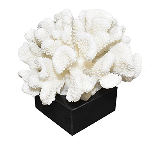 (COMLZD Decorative White Coral Sculpture On Base, Reef Resin Coral Flower Statue Figurine Beach Nautical Them Decor)