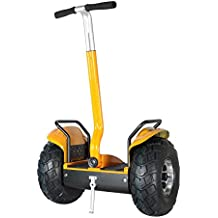 Smart Self Balance Scooter Personal Transporter 19 inch All Terrain Tires