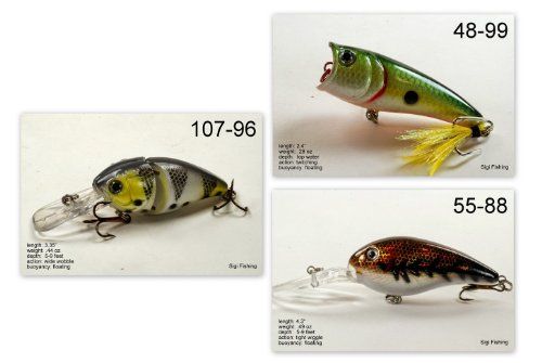 Akuna [WV] Pros' pick recommendation collection of lures for Bass, Panfish, Trout, Pike and Walleye fishing in West Virginia(Bass 3-A) (Best Trout Fishing In Wv)