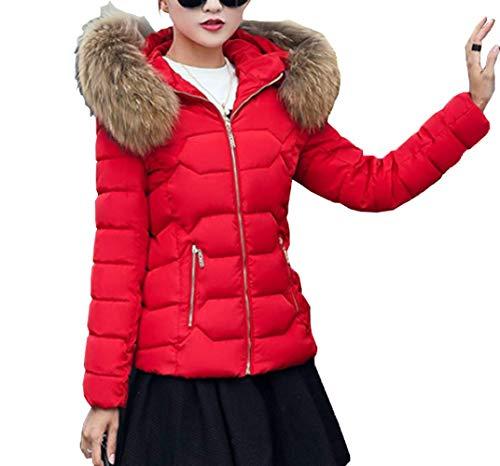 Fräulein Moda Abrigo Hoodie con Plumas Mujer Slim Coat de Otoño Ropa Jacket Fox Caliente Chaqueta Casual de Manga Mantener Abajo Outwear Capucha Invierno Larga Corto rwBrRq
