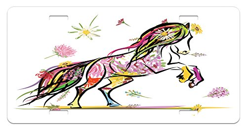 (Lunarable Sketchy License Plate, Pony Horse Surrounded by Colorful Flowers on Her Tail and Hair Equestrian Design, High Gloss Aluminum Novelty Plate, 5.88 L X 11.88 W Inches, Multicolor)