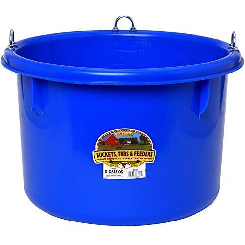Pan Feed Gallon (Little Giant Plastic Round Feeder, 8-Gallon, Blue)