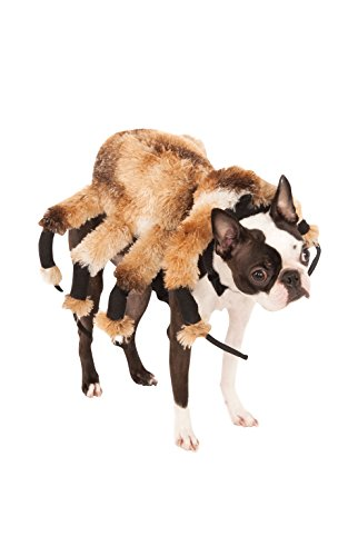 Tarantula Dog Halloween Costume (Giant Spider Pet Suit, Medium)
