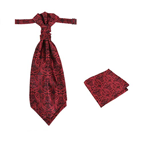 Epoint Mens Fashion Pre-tied Ascot Tie Paisley Pre-tied Cravats for Business Caual, Hanky Set, Come in a Gift Box