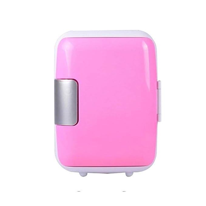 Amazon.es: 4L 12V 220V Mini Coche Nevera Refrigerador Calentador ...