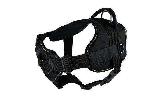 Dean & Tyler D&T FUN-CH TPYDPM YT-XL Fun Dog Harness with Padded Chest Piece, Therapy Dog Please Pet Me, X-Large, Fits Girth 86cm to 119cm, Black with Yellow Trim