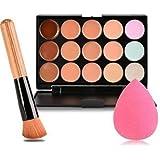 Boolavard Nuovi 15 Colori Fronte di Profilo Crema Trucco Concealer + Powder Brush + Spugna di Colore Rosa Puff