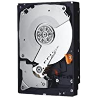 Western Digital WD3000FYYZ ENTERPRISE 3TB 7200RPM, 64MB Cache SATA 6.0Gb/s 3.5 internal hard drive Bare Drive