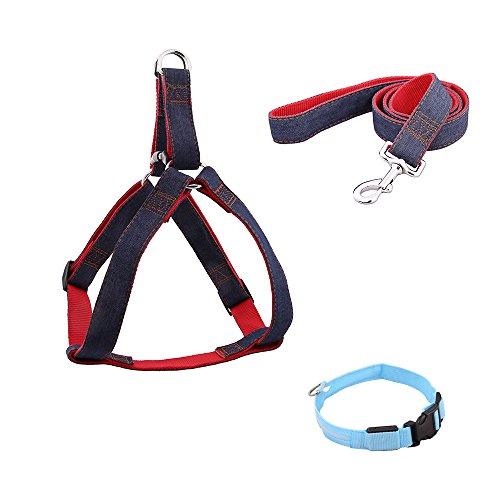 TTLIFE Dog Leash Harness, Adjustable Denim Dog Leash for Training Walking Running, Jean Denim Leash Harness Dog Collar Chain Cat rope for Large/Medium/Small Dog (L, BLUE)