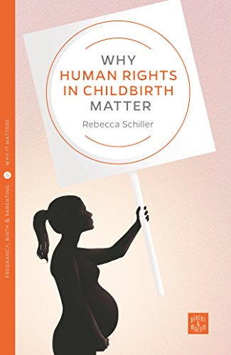Why Human Rights in Childbirth Matter (Pinter & Martin Why It Matters Book 9) by [Schiller, Rebecca]
