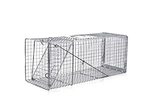 eXtreme Products Professional Rear Release Box Trap 31x11x12 for Armadillos Feral Cats Groundhogs Mink Opossum Raccoons Rabbits Skunks and Other Small to Medium Pests