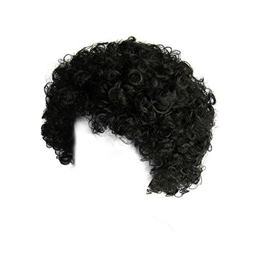 SeasonsTrading Economy Black Afro Wig ~ Halloween Costume Party Wig (STC13032) - Disco Afro Wig In Black