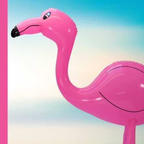 Flamingo 1st Birthday Party Guest Book: Flamingo 1st Birthday Party Guest Book Includes Picture Pages Plus Bonus Gift Tracker You Can Print Out to ... 1st Birthday Party Decorations) (Volume 1) ebook