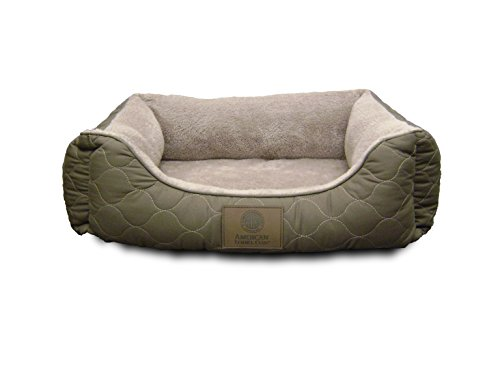 Orthopedic Cat Beds (American Kennel Club Orthopedic Circle Stitch Cuddler Pet Bed,)
