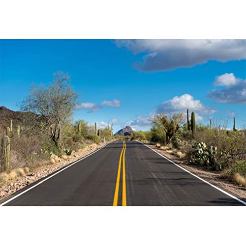 Laeacco 7x5ft Dusk Outdoor Wildland Highway Roadside Cactuses Wildness Scenic Vinyl Photography Background Desolate Place Scenic Backdrop Indoor Decors Landscape Wallpaper Personal Portrait Shoot