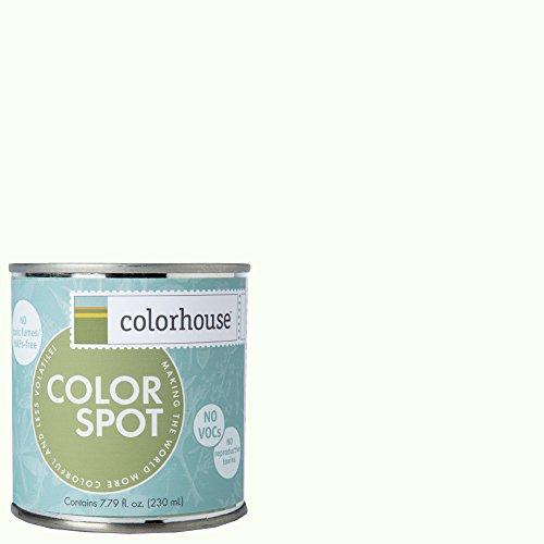 inspired-eggshell-interior-colorspot-paint-sample-imagine-02-8-oz
