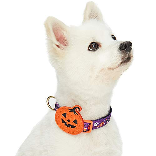 Blueberry Pet 2019 Happy Halloween Pumpkin Party Designer Dog Collar with Detachable Decoration, Small, Neck 12
