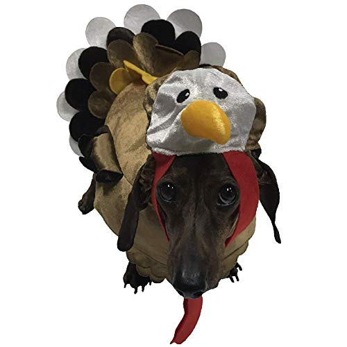 Turkey Costume for Small Dogs (X-Small) -