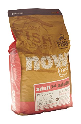 Now Fresh Grain Free Fish Adult Recipe Dog Food - 6lb