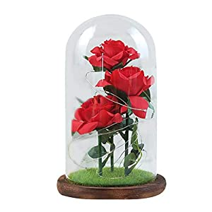 Beauty and The Beast Rose,ZTY66 Red Silk Rose and Glass Dome Led Light with Fallen Petals Housewarming Gift for Valentine's Day Wedding Anniversary Mother's Day Party Supplies 83