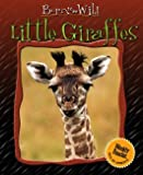 Little Giraffes, Christian Marie, 083684436X