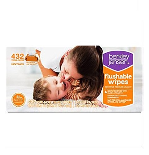 Family & Toddler Moist Flushable Wipes, 432 Count